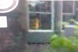 Un fantasma in questa foto?