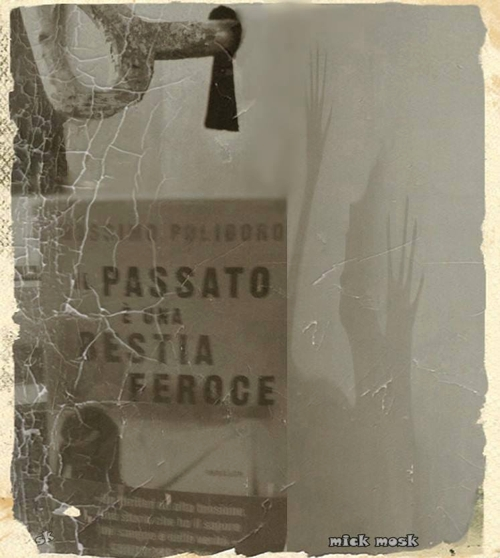 Michele Moscarelli: «E questa la mia personale interpretazione del libro».