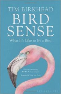 Come ci si sente a essere un uccello? Un interessante libro che affronta l'insolita domanda...